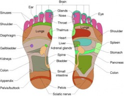 Reflexology at Chagrin Valley Wellness Center